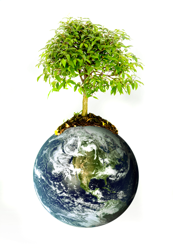 protect the environment concept - earth with a tree isolated over a white background